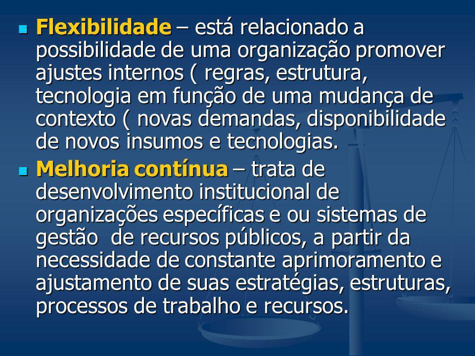 Flexibilidade – está relacionado a possibilidade de uma organização promover ajustes internos ( regras, estrutura, tecnologia em função de uma mudança