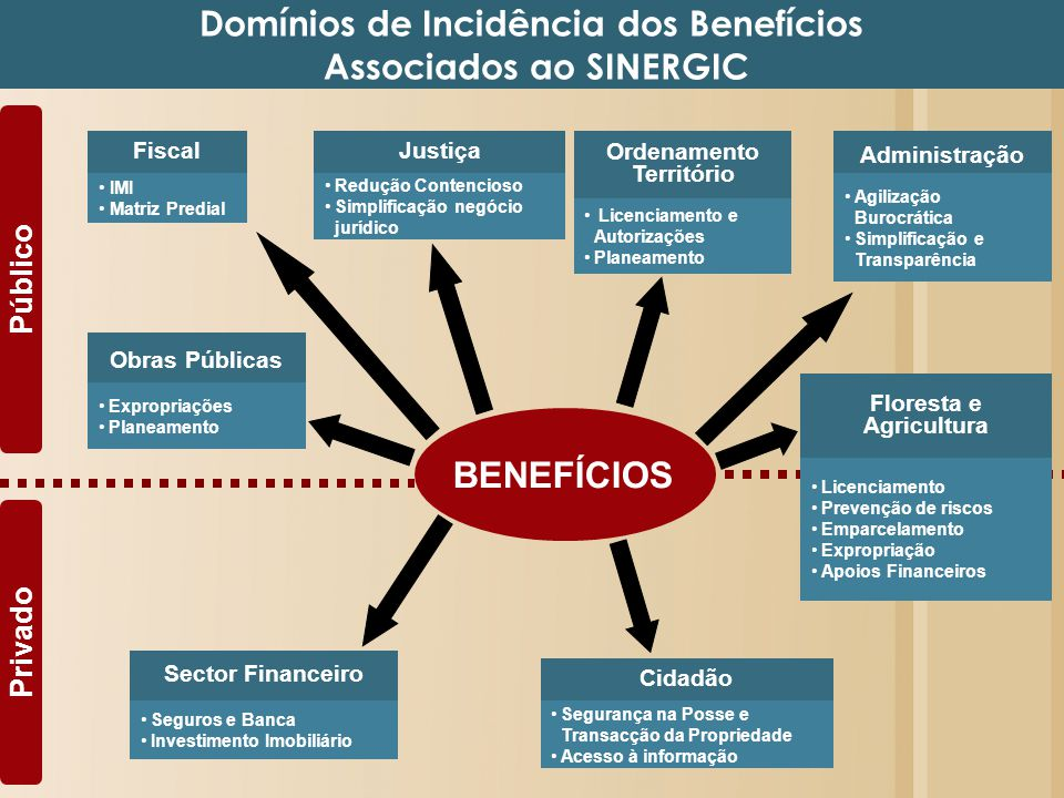 Justiça Público Privado Redução Contencioso Simplificação negócio jurídico BENEFÍCIOS Domínios de Incidência dos Benefícios Associados ao SINERGIC Adm