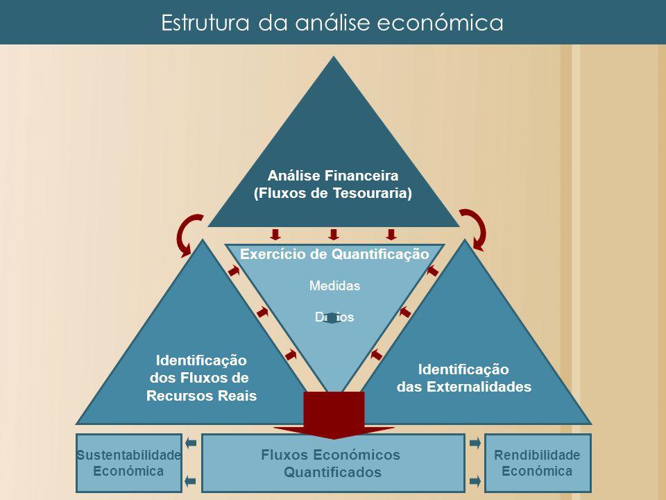 Análise Financeira (Fluxos de Tesouraria) Exercício de Quantificação Medidas Dados Identificação das Externalidades Identificação dos Fluxos de Recurs