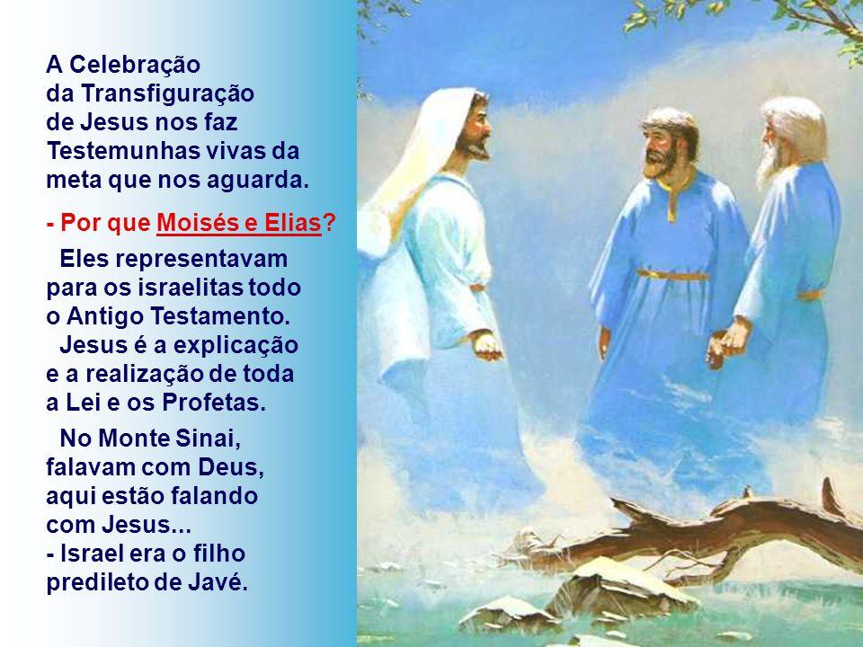 A Celebração da Transfiguração de Jesus nos faz Testemunhas vivas da meta que nos aguarda.