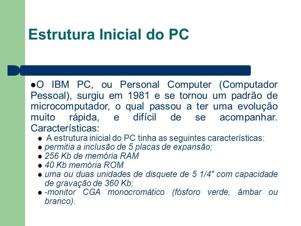 Estrutura Inicial do PC O IBM PC, ou Personal Computer (Computador Pessoal), surgiu em 1981 e se tornou um padrão de microcomputador, o qual passou a ter uma evolução muito rápida, e difícil de se acompanhar.