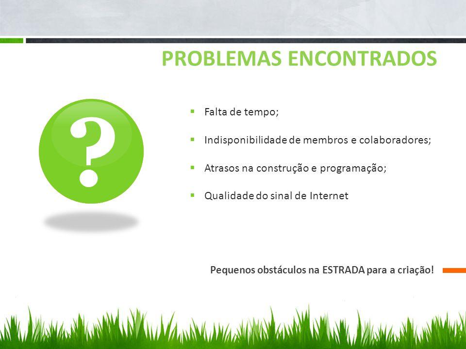 PROBLEMAS ENCONTRADOS Pequenos obstáculos na ESTRADA para a criação.