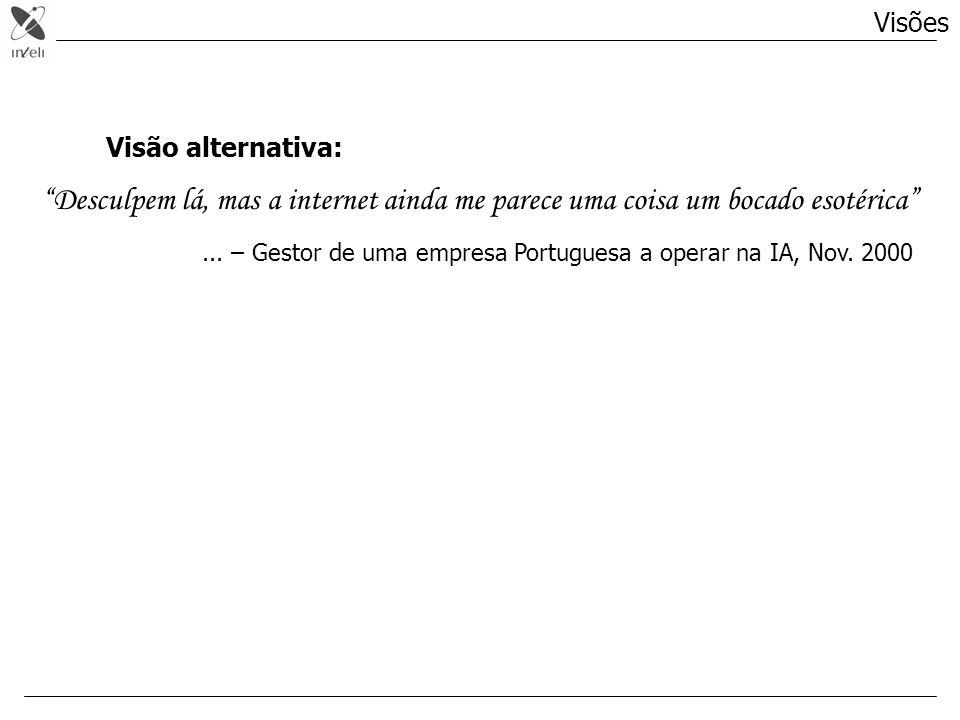 Visão alternativa: Desculpem lá, mas a internet ainda me parece uma coisa um bocado esotérica... – Gestor de uma empresa Portuguesa a operar na IA, No