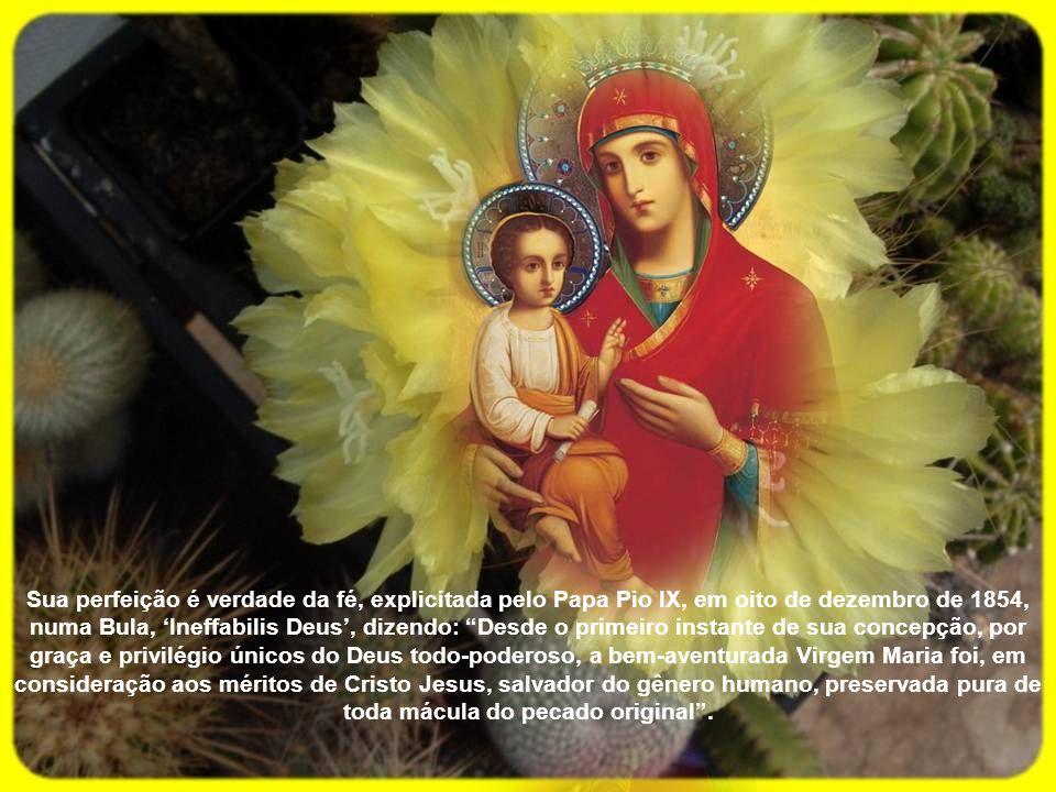Esta Maria é das dores e das graças, de Lourdes e de Fátima, das Mercês e do Bom Sucesso, da Glória e da Saúde, da Boa Viagem e do Desterro, da Esperança e da Paz, da Piedade e da Misericórdia, de um lugar e de muitos outros, na vila, nos alagados, da Rasa, da Várzea ou em Guadalupe; Rainha e Serva, Mãe e Filha, Mestra e discípula missionária, por ser da Conceição, Aparecida, a Imaculada.