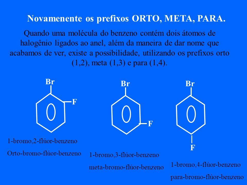 Br F Novamenente os prefixos ORTO, META, PARA.