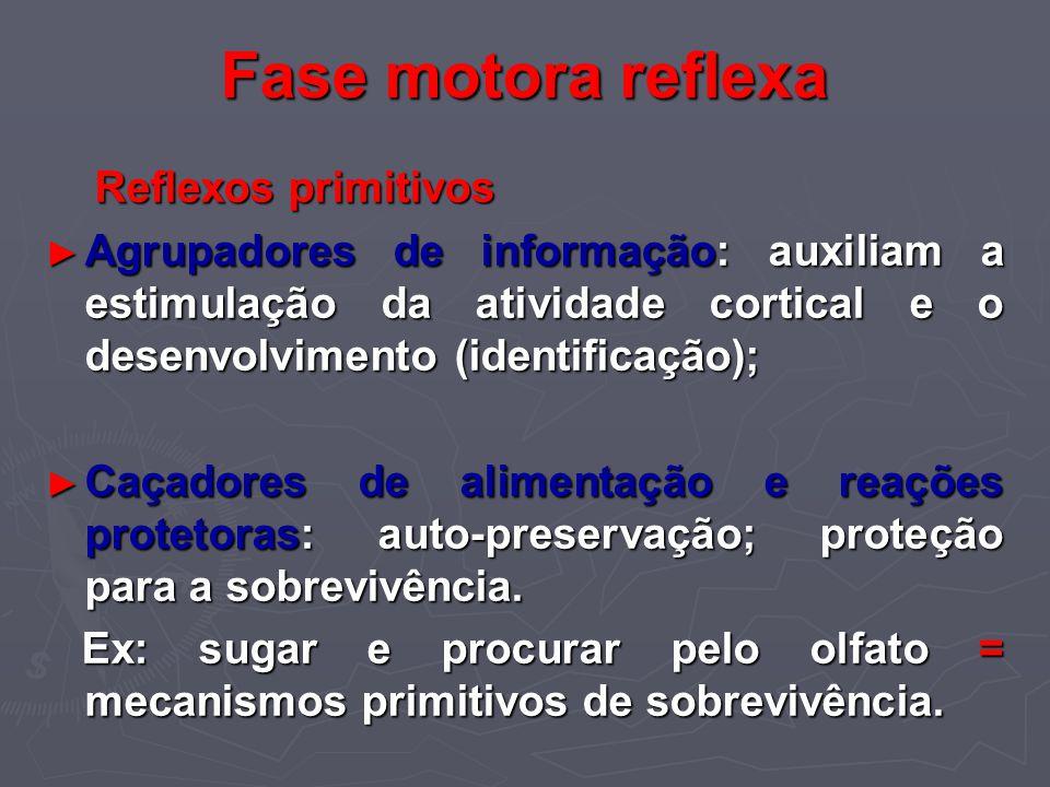 Fase motora reflexa Reflexos primitivos Reflexos primitivos Agrupadores de informação: auxiliam a estimulação da atividade cortical e o desenvolviment