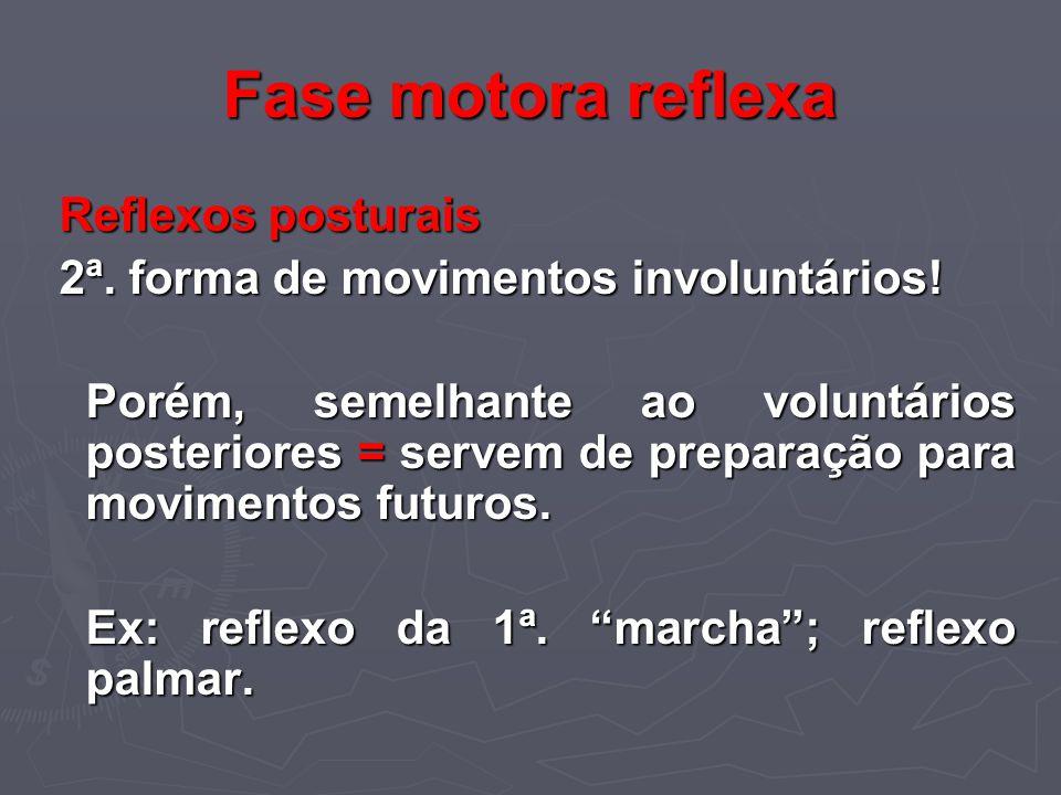 Fase motora reflexa Reflexos posturais Reflexos posturais 2ª. forma de movimentos involuntários! 2ª. forma de movimentos involuntários! Porém, semelha