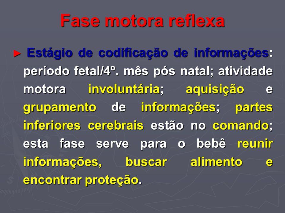 Fase motora reflexa Estágio de codificação de informações: período fetal/4º. mês pós natal; atividade motora involuntária; aquisição e grupamento de i