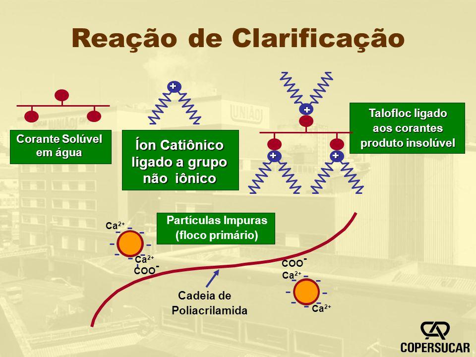 Reação de Clarificação + ++ + Ca 2+ COO - Ca 2+ COO - Corante Solúvel em água Íon Catiônico ligado a grupo não iônico Talofloc ligado aos corantes pro