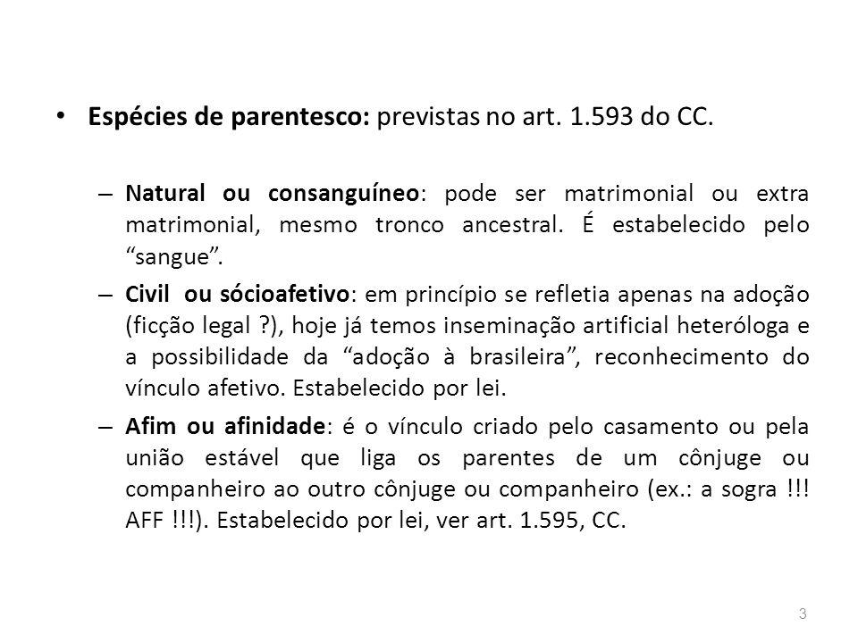 Espécies de parentesco: previstas no art.1.593 do CC.