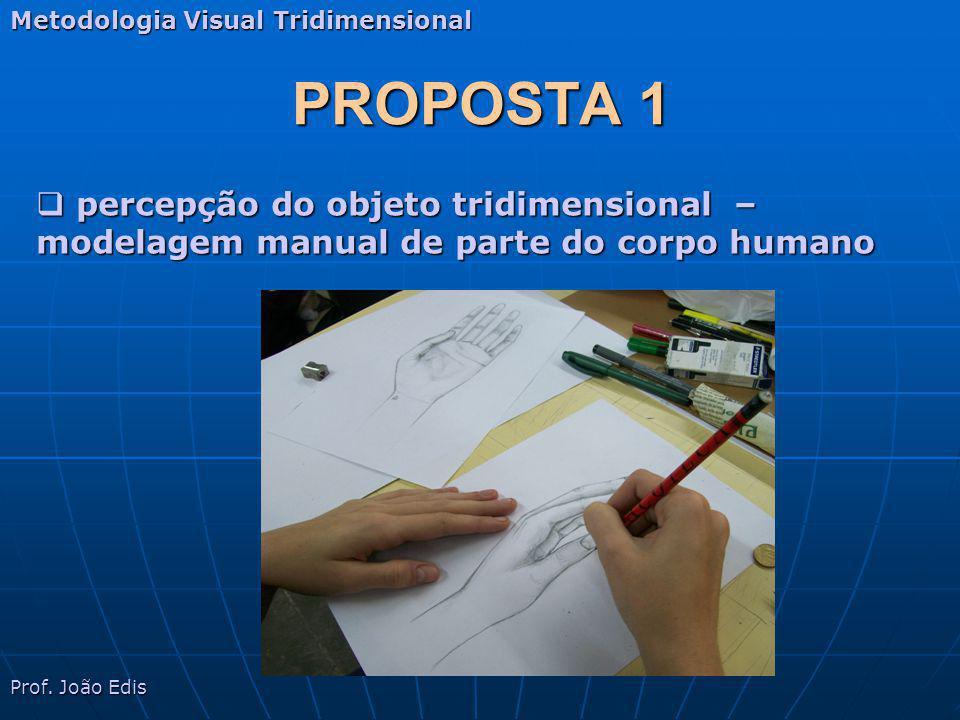 PROPOSTA 1 Metodologia Visual Tridimensional Prof.