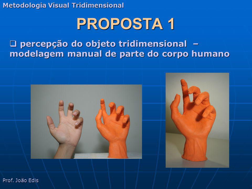 PROPOSTA 1 Metodologia Visual Tridimensional Prof. João Edis percepção do objeto tridimensional – modelagem manual de parte do corpo humano percepção