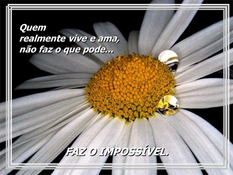 FAZ O IMPOSSÍVEL.FAZ O IMPOSSÍVEL. Quem realmente vive e ama, não faz o que pode...