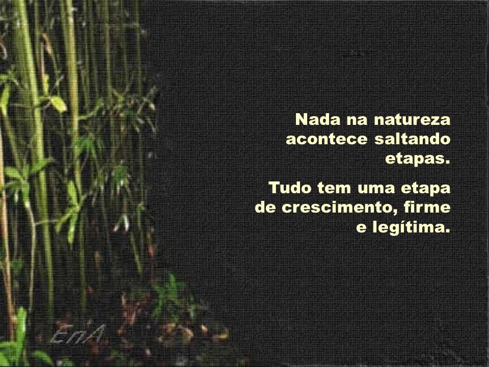 Nada na natureza acontece saltando etapas. Tudo tem uma etapa de crescimento, firme e legítima.