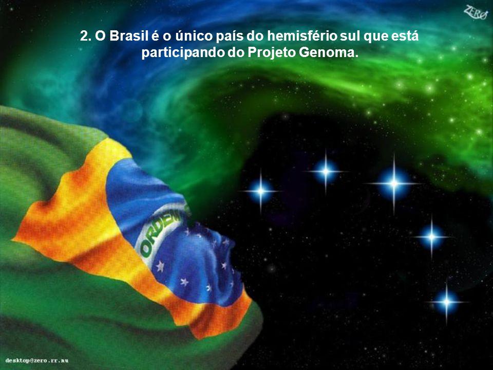 Bendito este povo, que possui a magia de unir todas as raças, de todos os credos