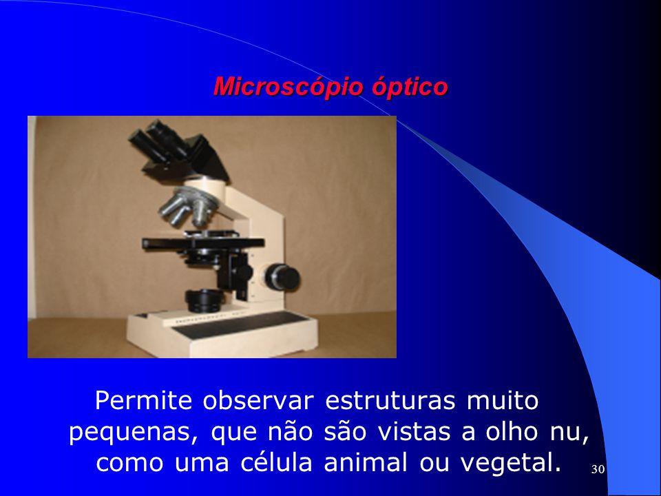 30 Microscópio óptico Permite observar estruturas muito pequenas, que não são vistas a olho nu, como uma célula animal ou vegetal.