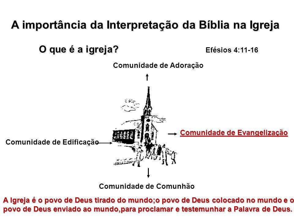 A importância da Interpretação da Bíblia na Igreja O que é a igreja.