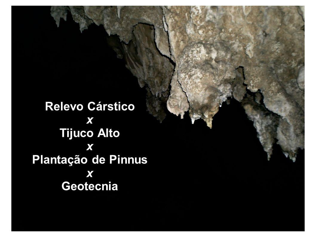 Relevo Cárstico x Tijuco Alto x Plantação de Pinnus x Geotecnia