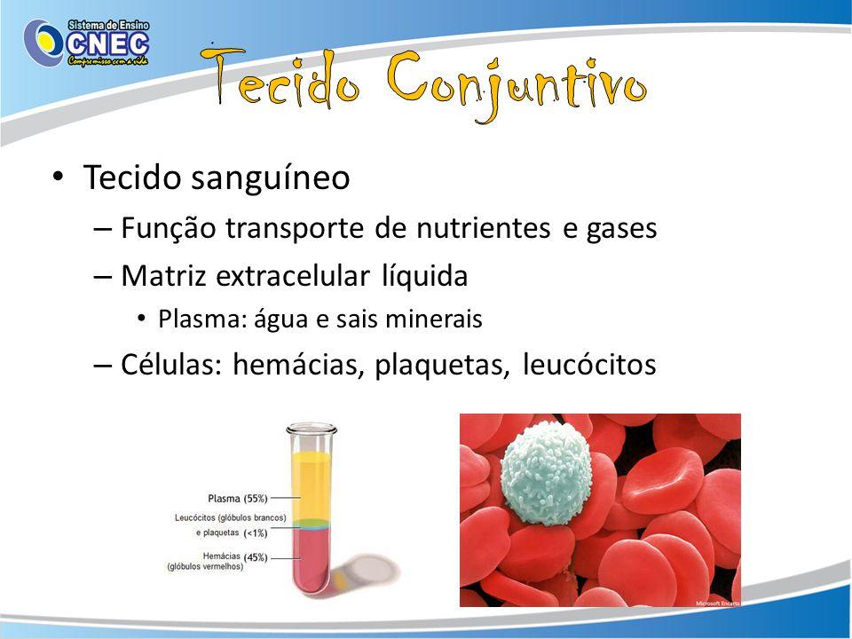Tecido sanguíneo – Função transporte de nutrientes e gases – Matriz extracelular líquida Plasma: água e sais minerais – Células: hemácias, plaquetas,