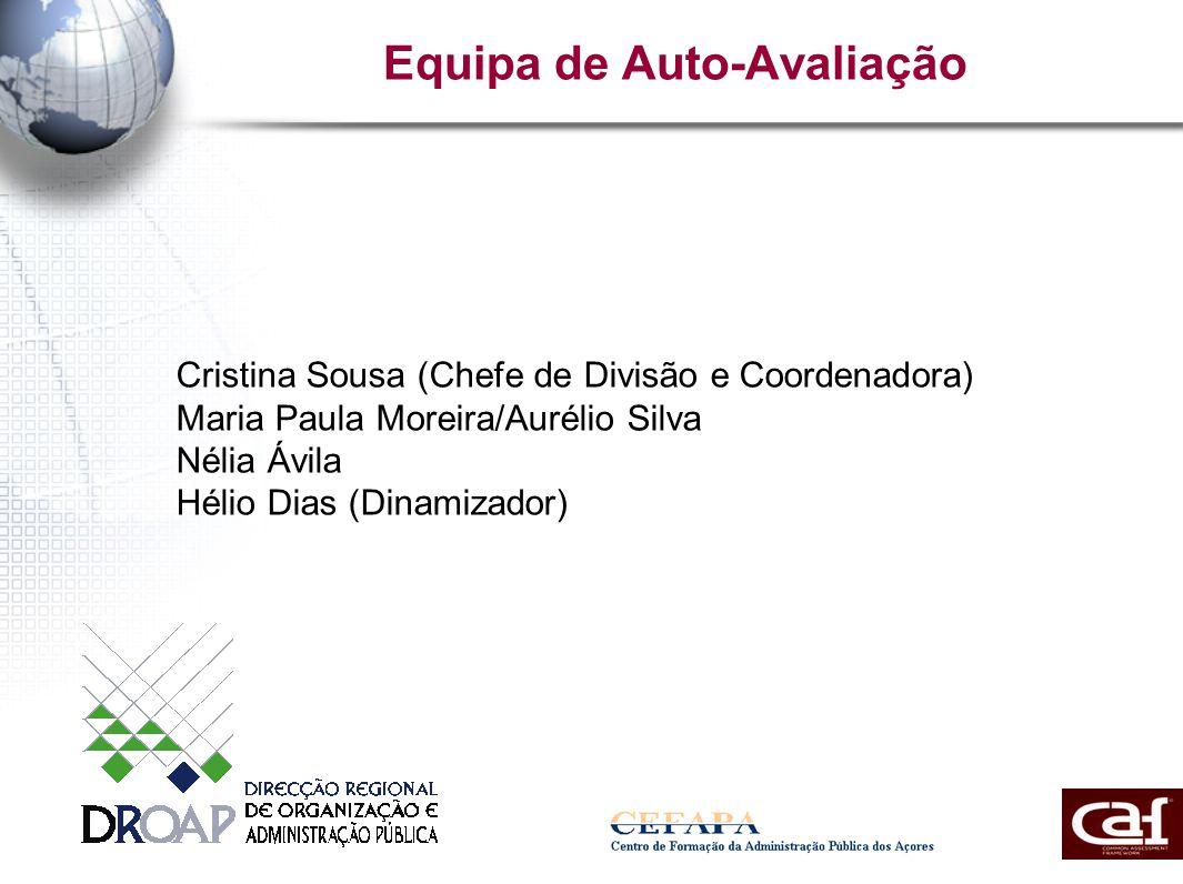 Equipa de Auto-Avaliação Cristina Sousa (Chefe de Divisão e Coordenadora) Maria Paula Moreira/Aurélio Silva Nélia Ávila Hélio Dias (Dinamizador)