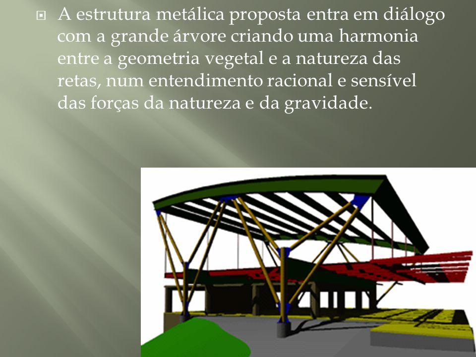 A estrutura metálica proposta entra em diálogo com a grande árvore criando uma harmonia entre a geometria vegetal e a natureza das retas, num entendim