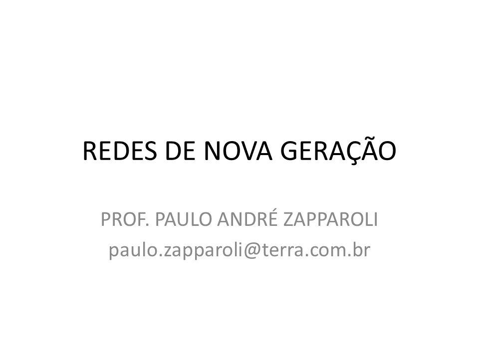 REDES DE NOVA GERAÇÃO PROF. PAULO ANDRÉ ZAPPAROLI paulo.zapparoli@terra.com.br