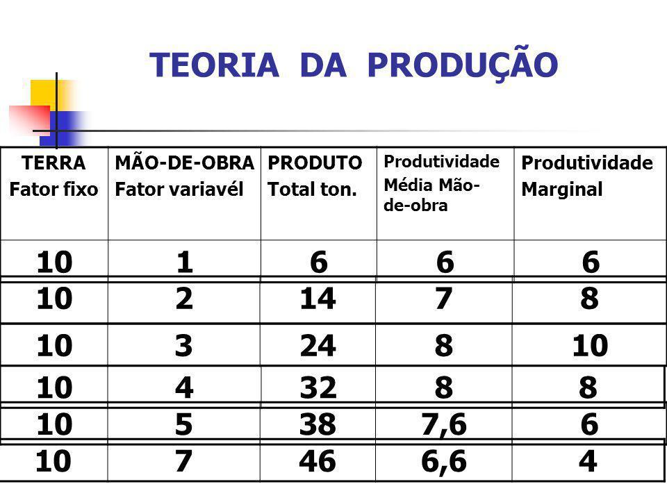 TERRA Fator fixo MÃO-DE-OBRA Fator variavél PRODUTO Total ton. Produtividade Média Mão- de-obra Produtividade Marginal 101666 21478 10324810 TEORIA DA