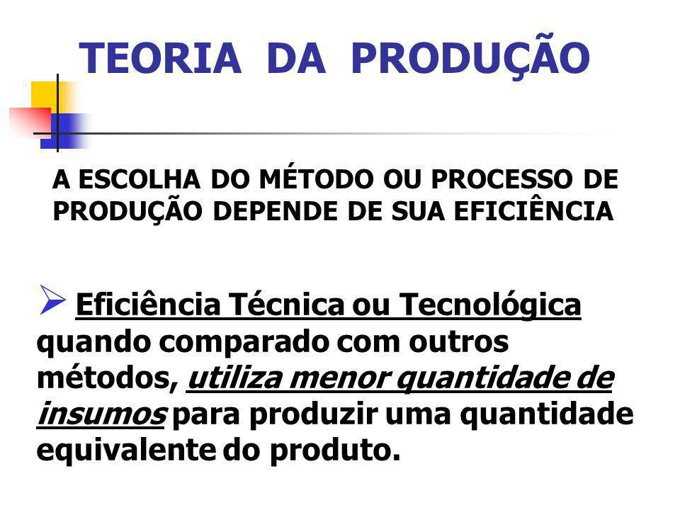 TEORIA DA PRODUÇÃO A EFICIÊNCIA ECONÔMICA, Está associada ao método de produção mais barato, isto é, os custos de produção são menores relativamente a outros métodos.