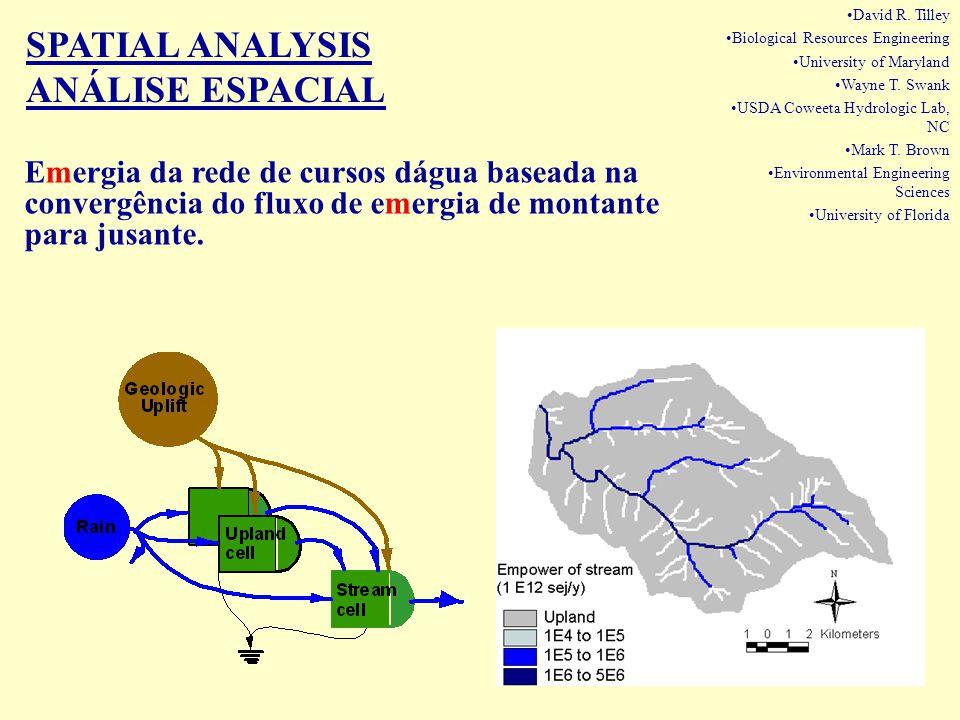 Emergia da rede de cursos dágua baseada na convergência do fluxo de emergia de montante para jusante. SPATIAL ANALYSIS ANÁLISE ESPACIAL David R. Tille