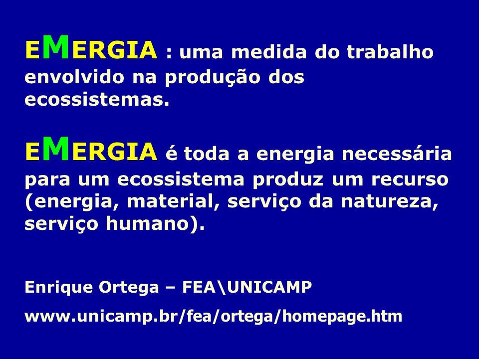 E M ERGIA : uma medida do trabalho envolvido na produção dos ecossistemas. E M ERGIA é toda a energia necessária para um ecossistema produz um recurso