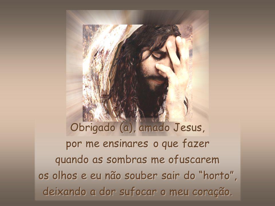Tomem posse da Minha vitória e repitam sem cessar: O meu Senhor é vitorioso e eu sou vitorioso (a) com Ele.