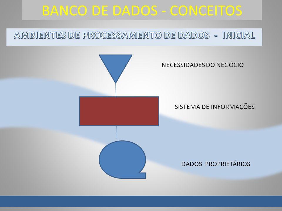 BANCO DE DADOS - CONCEITOS NECESSIDADES DO NEGÓCIO DADOS PROPRIETÁRIOS SISTEMA DE INFORMAÇÕES