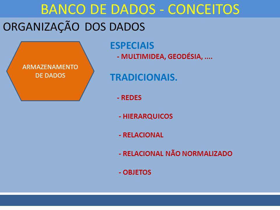 ORGANIZAÇÃO DOS DADOS BANCO DE DADOS - CONCEITOS ARMAZENAMENTO DE DADOS ESPECIAIS - MULTIMIDEA, GEODÉSIA,.... TRADICIONAIS. - REDES - HIERARQUICOS - R