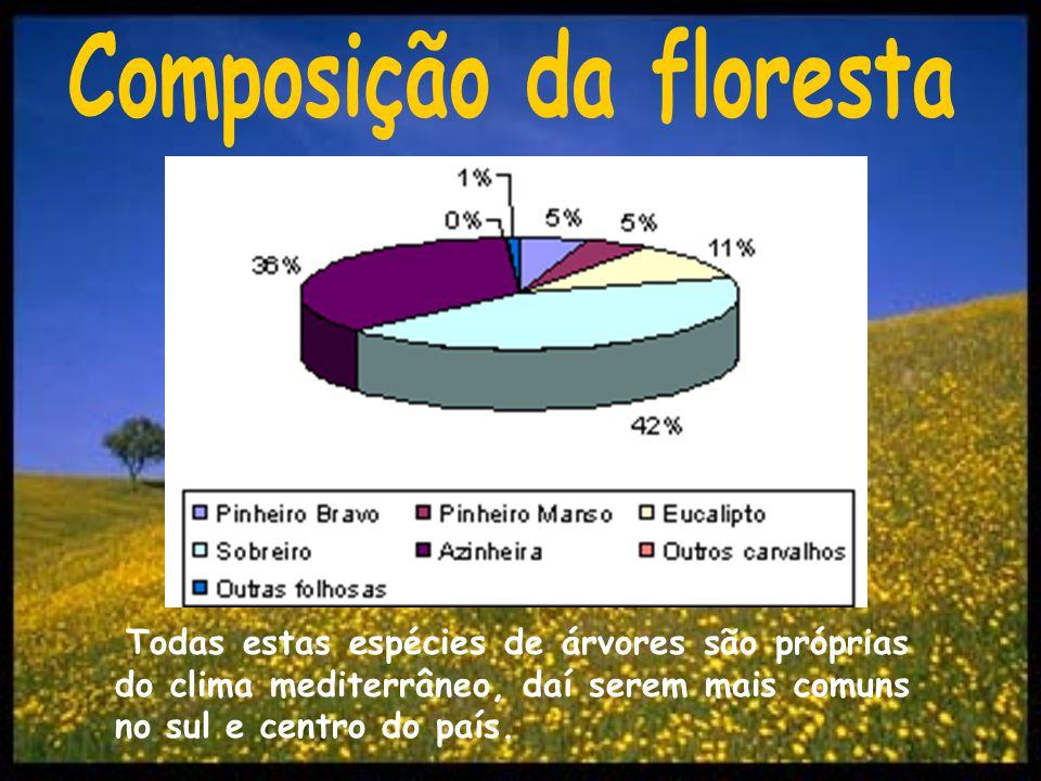 Todas estas espécies de árvores são próprias do clima mediterrâneo, daí serem mais comuns no sul e centro do país.