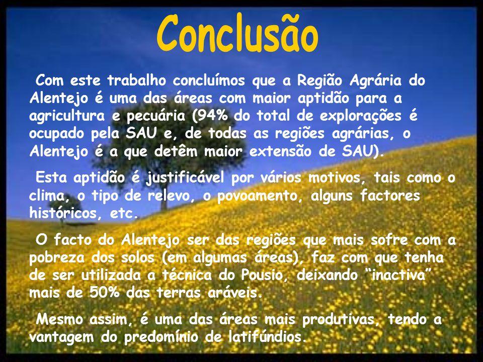 Cátia Almeida nº5 Helena Caixinha nº11 Paula Silva nº14 Sandra Torrinha nº17 12ºJ Março 2004