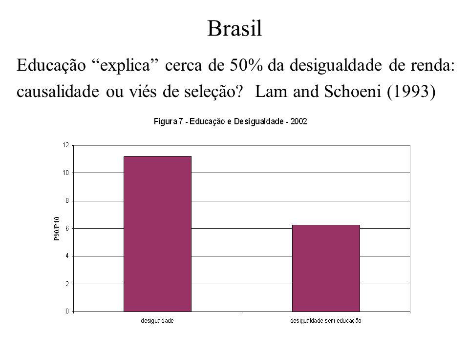 Brasil Educação explica cerca de 50% da desigualdade de renda: causalidade ou viés de seleção? Lam and Schoeni (1993)
