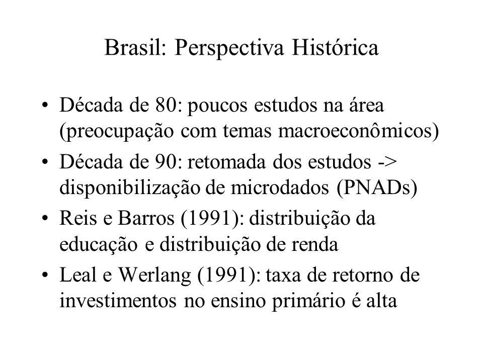 Brasil: Perspectiva Histórica Década de 80: poucos estudos na área (preocupação com temas macroeconômicos) Década de 90: retomada dos estudos -> disponibilização de microdados (PNADs) Reis e Barros (1991): distribuição da educação e distribuição de renda Leal e Werlang (1991): taxa de retorno de investimentos no ensino primário é alta