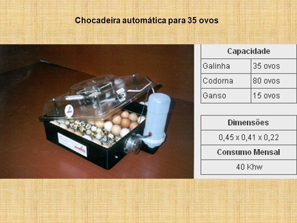 Chocadeira automática para 35 ovos