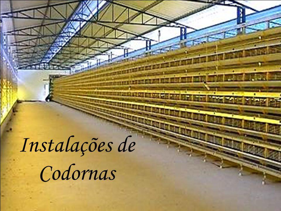 Instalações de Codornas
