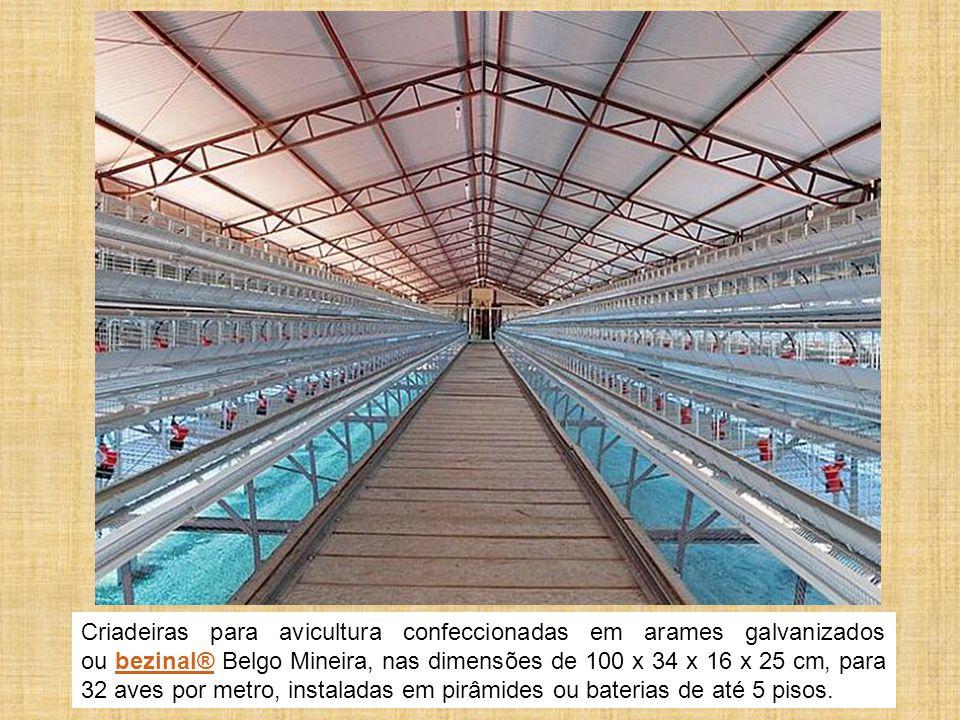 Criadeiras para avicultura confeccionadas em arames galvanizados ou bezinal® Belgo Mineira, nas dimensões de 100 x 34 x 16 x 25 cm, para 32 aves por m