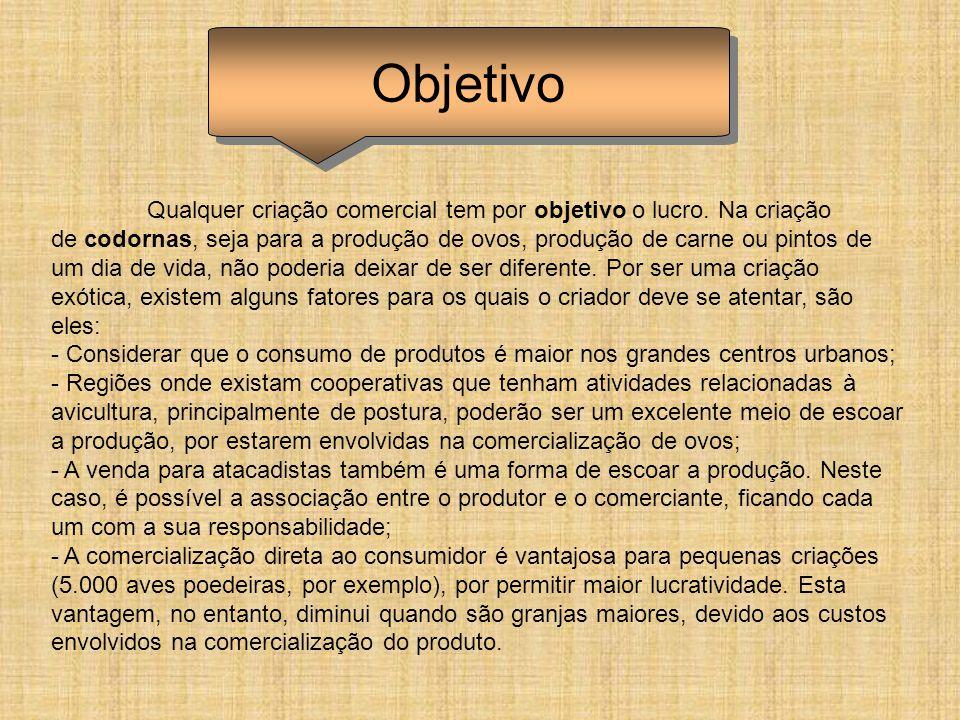 BEBEDOURO AUTOMÁTICO MODELO NIPPLE (MAMADEIRA) PARA AVES EM GERAL GALINHAS, CODORNAS, CODORNÃO, MARRECO, PATOS, PINTINHOS.
