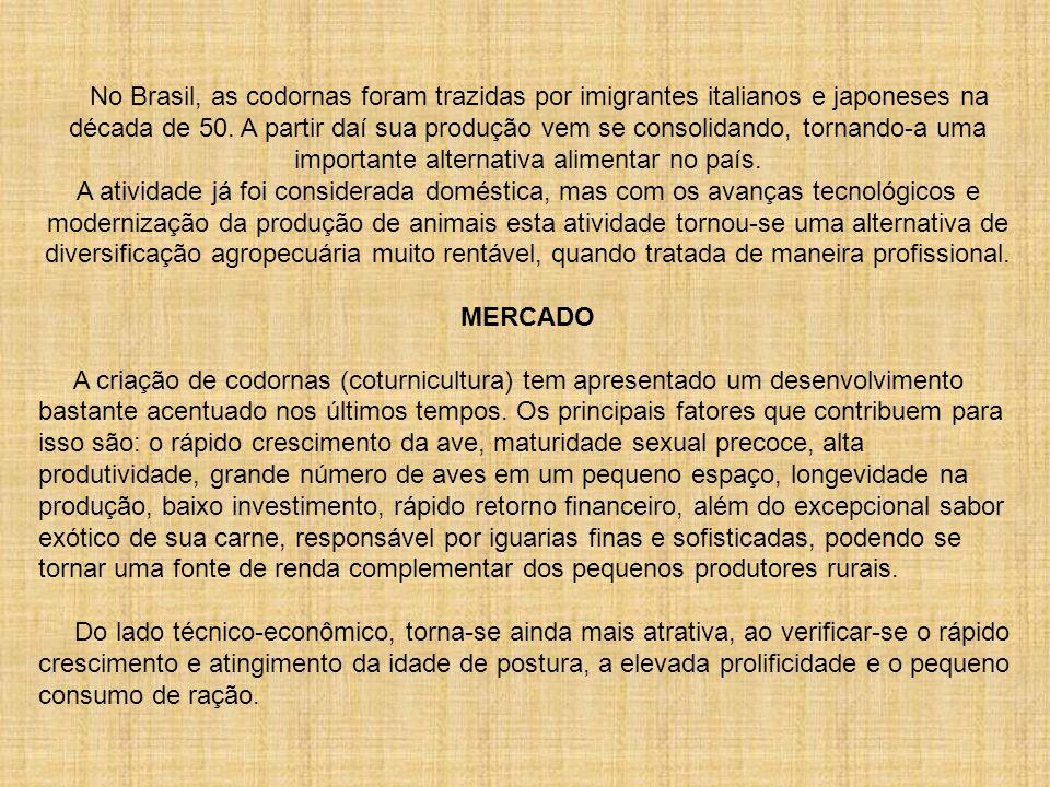No Brasil, as codornas foram trazidas por imigrantes italianos e japoneses na década de 50. A partir daí sua produção vem se consolidando, tornando-a
