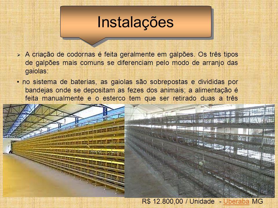 Sistema de distribuição de ração com caçamba em chapa de aço carbono, sistema de roscas, sobre suporte com rodas em trilhos no piso.