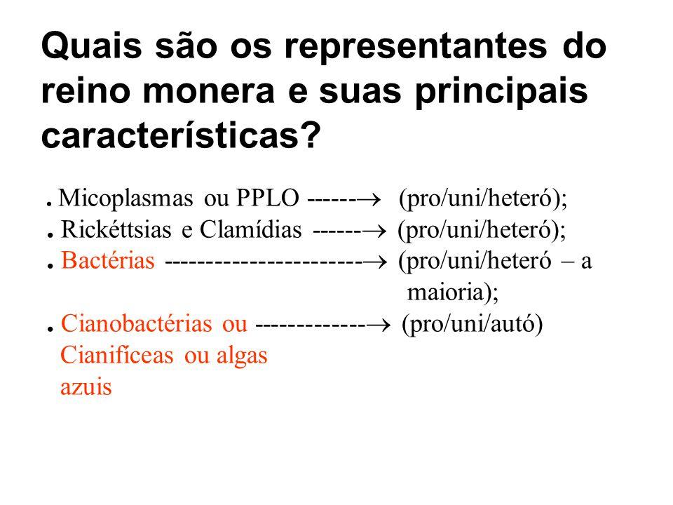 Quais são os representantes do reino monera e suas principais características?. Micoplasmas ou PPLO ------ (pro/uni/heteró);. Rickéttsias e Clamídias