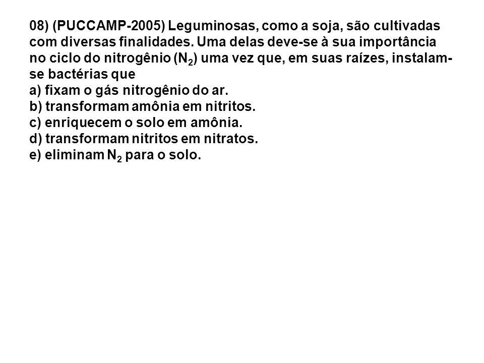 08) (PUCCAMP-2005) Leguminosas, como a soja, são cultivadas com diversas finalidades. Uma delas deve-se à sua importância no ciclo do nitrogênio (N 2