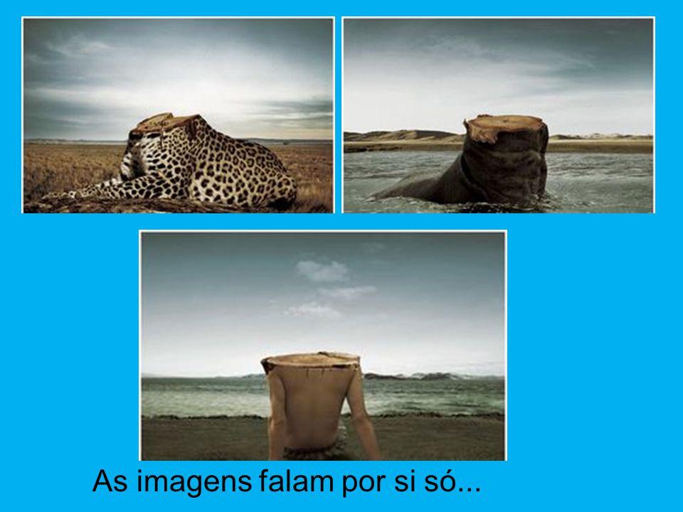 As imagens falam por si só...