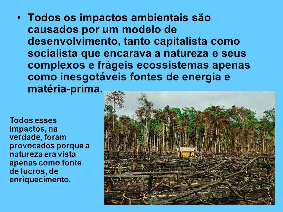 Todos os impactos ambientais são causados por um modelo de desenvolvimento, tanto capitalista como socialista que encarava a natureza e seus complexos e frágeis ecossistemas apenas como inesgotáveis fontes de energia e matéria-prima.