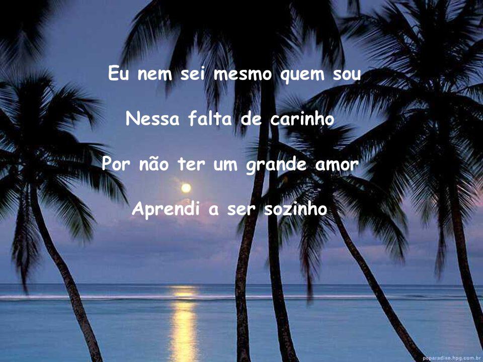 Eu nem sei mesmo quem sou Nessa falta de carinho Por não ter um grande amor Aprendi a ser sozinho
