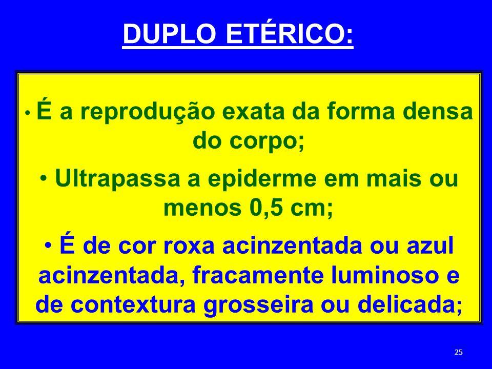 É a reprodução exata da forma densa do corpo; Ultrapassa a epiderme em mais ou menos 0,5 cm; É de cor roxa acinzentada ou azul acinzentada, fracamente