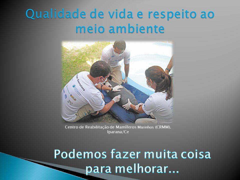 Em 2000, a ONU – Organização das Nações Unidas, ao analisar os maiores problemas mundiais, estabeleceu 8 Objetivos do Milênio ODM, que no Brasil são c